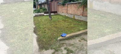 покос травы на придомовой территории
