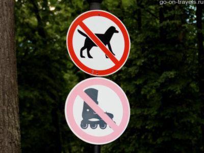 выгул собак на придомовой территории