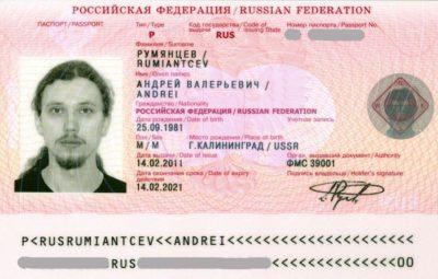 тип паспорта что это